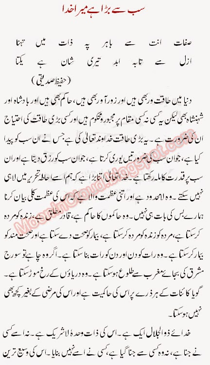 qaumi zaban ki ahmiyat essay writer