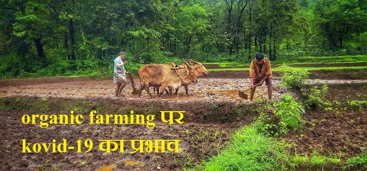 organic farming पर kovid-19 का प्रभाव