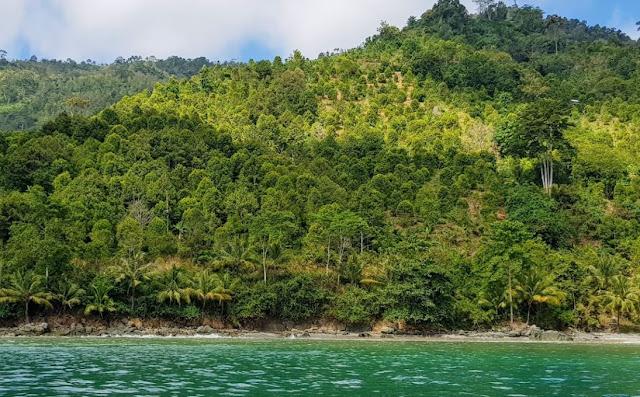 Pantai Watu Kodok Harga Tiket Masuk dan Fasilitas 2020
