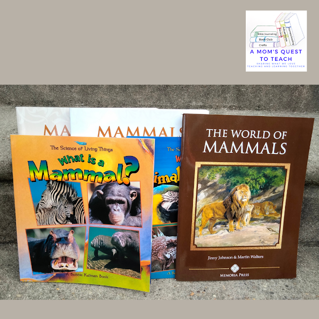 A Mom's Quest to Teach: Homeschooling Plans for Our Third Grader - What do we plan for our son's third grade year? Memoria Press Mammals Curriculum