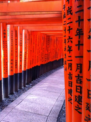 gli ideogrammi neri laccati sui pilastri arancioni dei torii