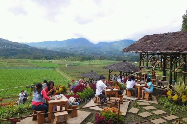 Konsep cafe sawah Pujon Kidul