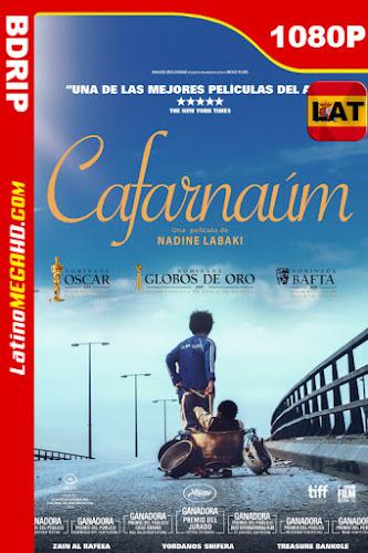 Capharnaüm (2018) Latino HD BDRip 1080P - 2018