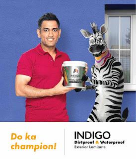Who is the brand ambassador of Indigo paints? || इंडिगो पेंट्स के ब्रांड अम्बस्सडोर कोण हैं ?