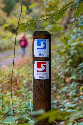 Wildwiesenweg – Eitorf | Wandern in der Naturregion-Sieg | Erlebniswege Sieg 08