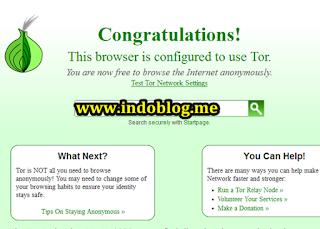 Cara Menggnakan TOR Browser Untuk Buka Situs diblokir