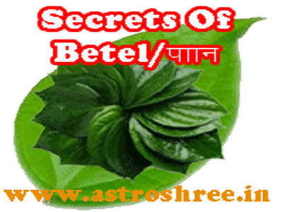 what are the benefits of eating betel