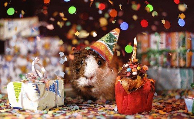 Birthday Wishes for Mama [मामाला वाढदिवसाच्या हार्दिक शुभेच्छा]