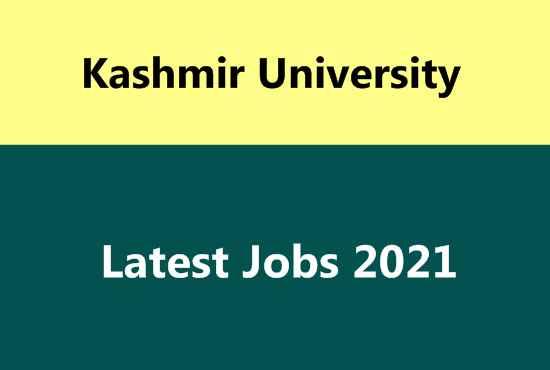 Cluster University Srinagar (CLU) Jobs Notification 2021, Check eligibility Criteria