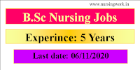 B.Sc Nursing with 5 Years Experience jobs