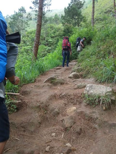 Pendakian Gunung Andong via Sawit, Magelang - Gunung Terbaik Untuk Pendaki Pemula