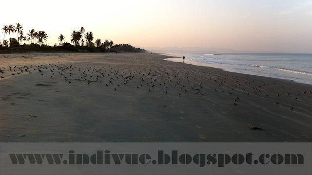 Fatrade Beach, Goa, Intia