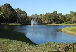 The pond near the entrance of Cypress Lakes with the fountain.