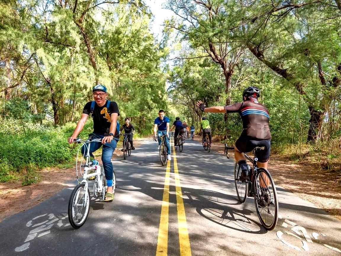 雲林 綠色一線天自行車道 低調秘境 國片「練習曲」拍攝地之一 四湖海清宮 景點