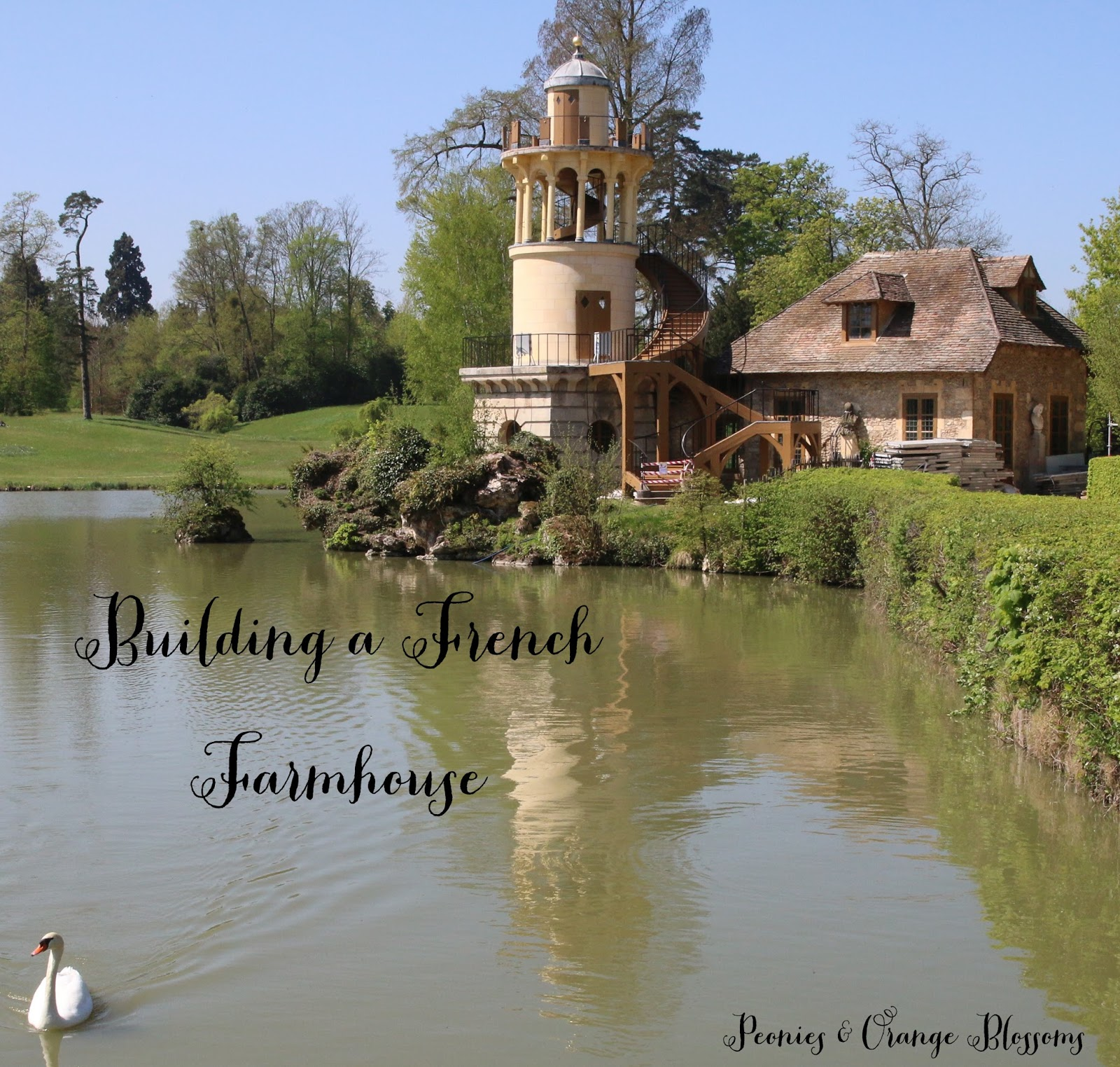 Peonies and Orange Blossoms Building a French Farmhouse