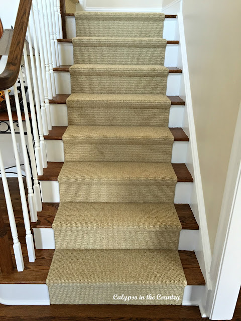 Sisal Look Stair Runner