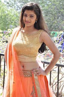 Actress Pallavi Naidu Stills in Half Saree at Lord Shiva Creations New Movie Launch 0012.jpg