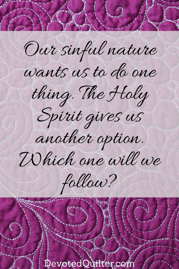 Our sinful nature wants us to do one thing. The Holy Spirit offers another option. Which will we follow? | DevotedQuilter.com