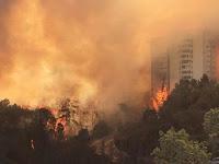 Akibat Kebakaran Hebat, Israel Diselimuti Awan Bau Busuk