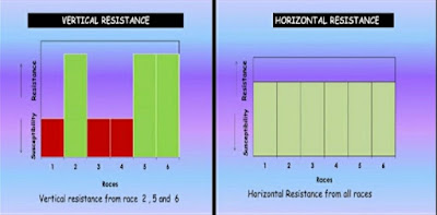 Horizontal And Vertical Resistance In Plants