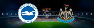 Ньюкасл Юнайтед – Брайтон энд Хоув Альбион смотреть онлайн бесплатно 21 сентября 2019 прямая трансляция в 19:30 МСК.