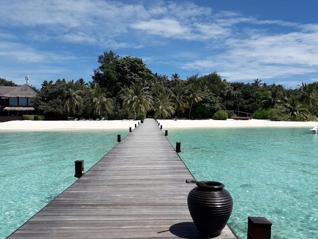 Vacation.Beaches.Palm Tree.Resort.Island resort.Water.Sun Shine, maldives hotel under water,Maldives hotel under water, underwater hotels in the Maldives,  underwater hotels Maldives, resorts the Maldives, hotels of Maldives, vacation in Maldives, vacationing in the Maldives, Maldives for vacation, vacation at Maldives, vacation at the Maldives, vacation in the Maldives, vacation Maldives, vacation to the Maldives, vacations Maldives, where Maldives, Maldives at where