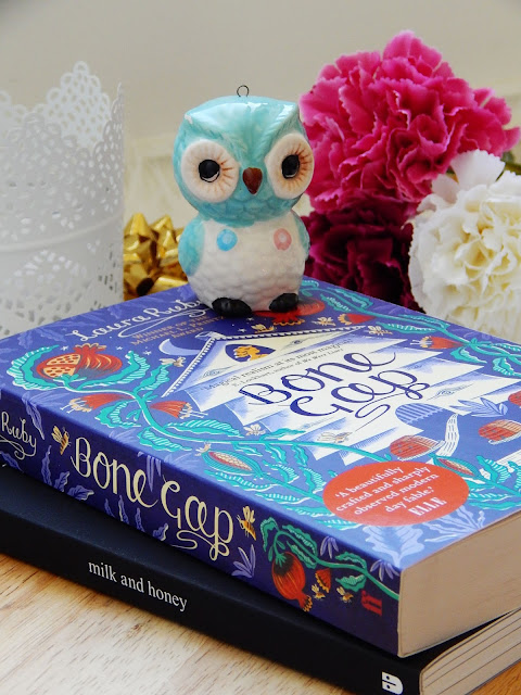 Bone Gap No Spoiler Book Review | sprinkledpages