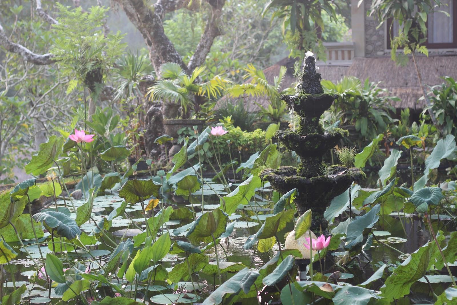 swing chair ubud covers for ikea tullsta lilies kate