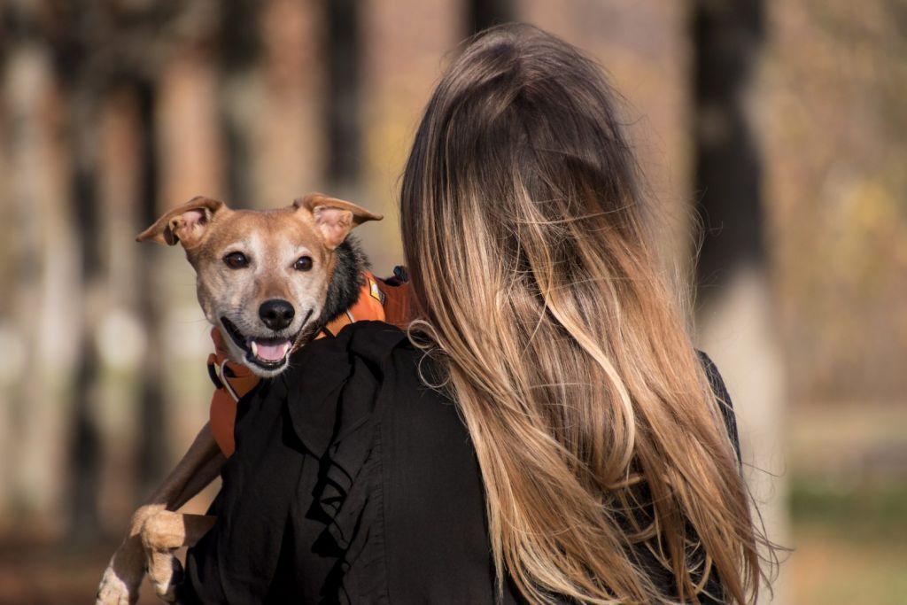 Συνδέονται τα κατοικίδια με την πραγματική ευτυχία; Νέα έρευνα αποκαλύπτει