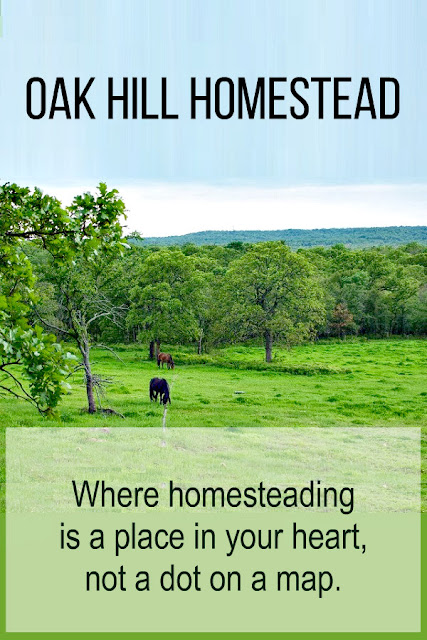 Homesteading is more than a dot on a map, it's a place in your heart. Oak Hill Homestead will inspire your vision of a simple, healthy life: gardening, food preservation, cooking from scratch, backyard chickens and more.