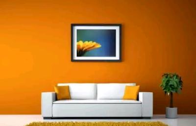 dekorasi warna rumah
