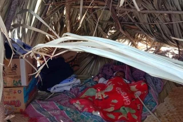 Di HUT Kemerdekaan: Rumah Dirusak, Warga Adat Besipae Diusir Aparat saat Tinggal di Bawah Pohon