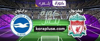 موعد مباراة ليفربول وبرايتون بث مباشر بتاريخ 30-11-2019 الدوري الانجليزي
