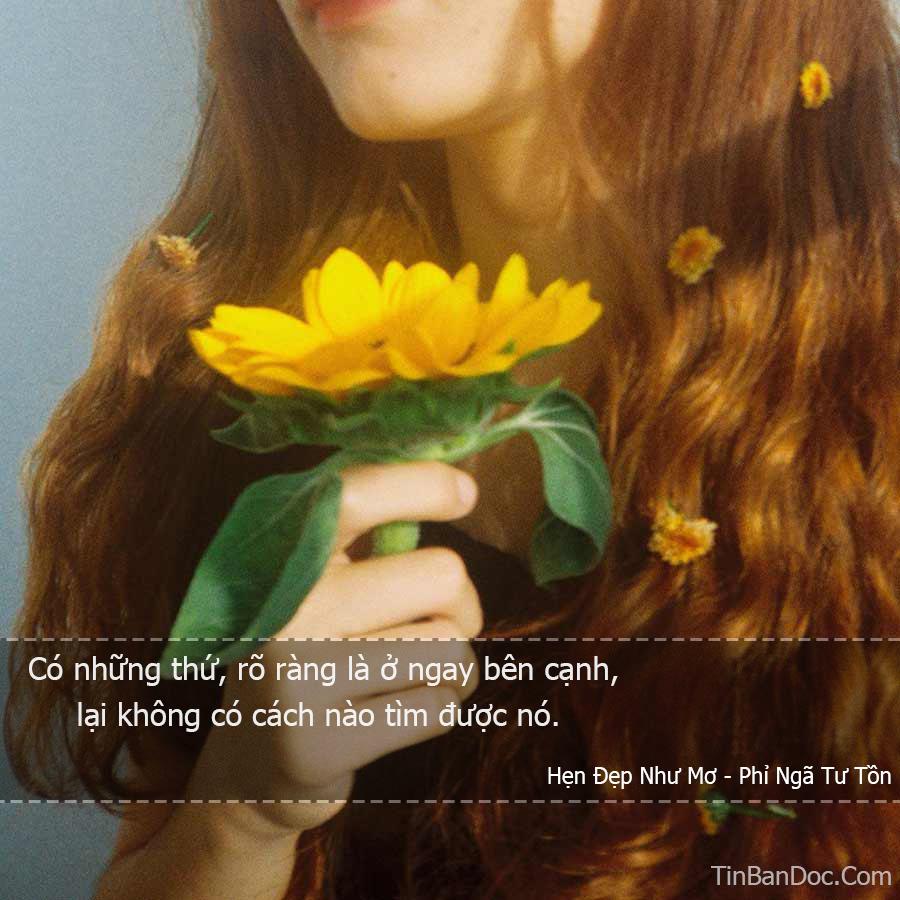 STT, Quotes & Trích Dẫn Ngôn Tình Hẹn Đẹp Như Mơ - Phỉ Ngã Tư Tồn