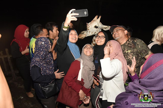 Night Safari Zoo Taiping