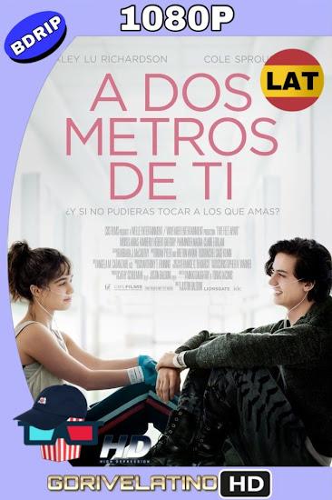 A Dos Metros de Ti (2019) BDRip 1080p Latino-Ingles MKV