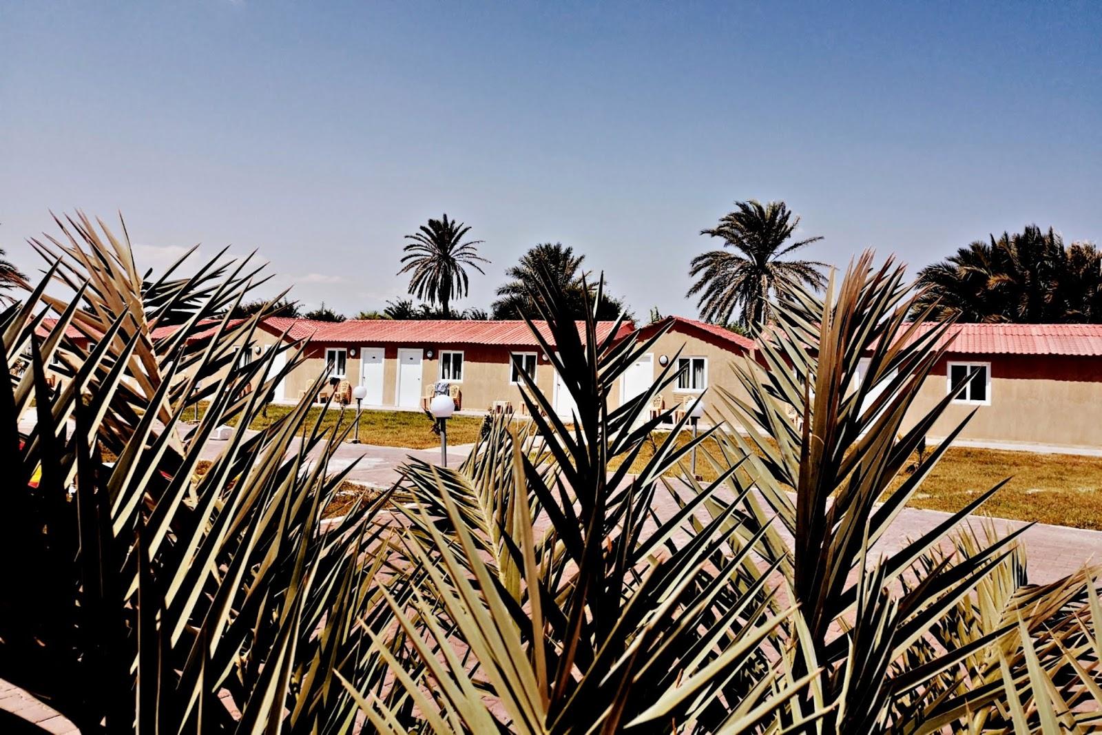 Czy warto jechać do Tunezji?