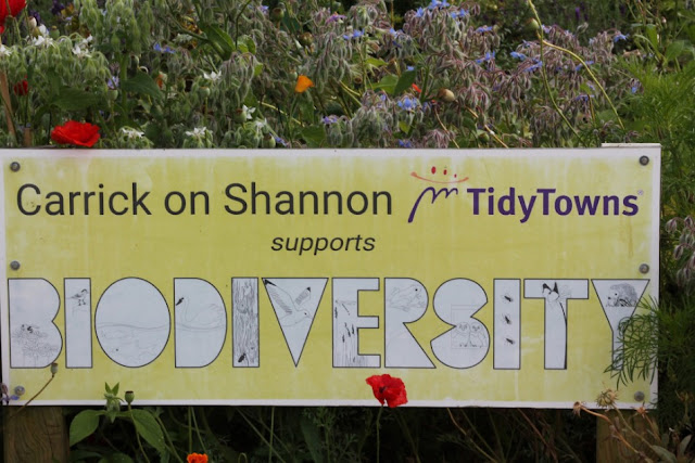 Carrick on Shannon Tidy Towns Biodiversity Sign