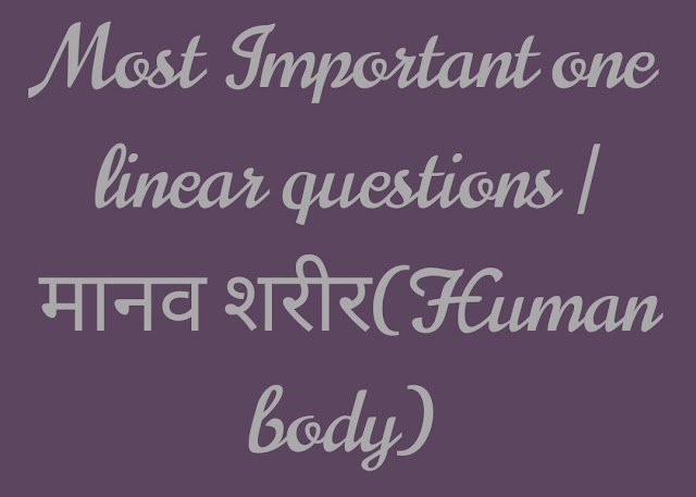 Most Important one linear questions | मानव शरीर(Human body)