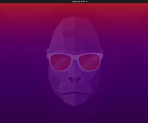 "Ubuntu 20.10 ""Groovy Gorilla"" disponibile al download"