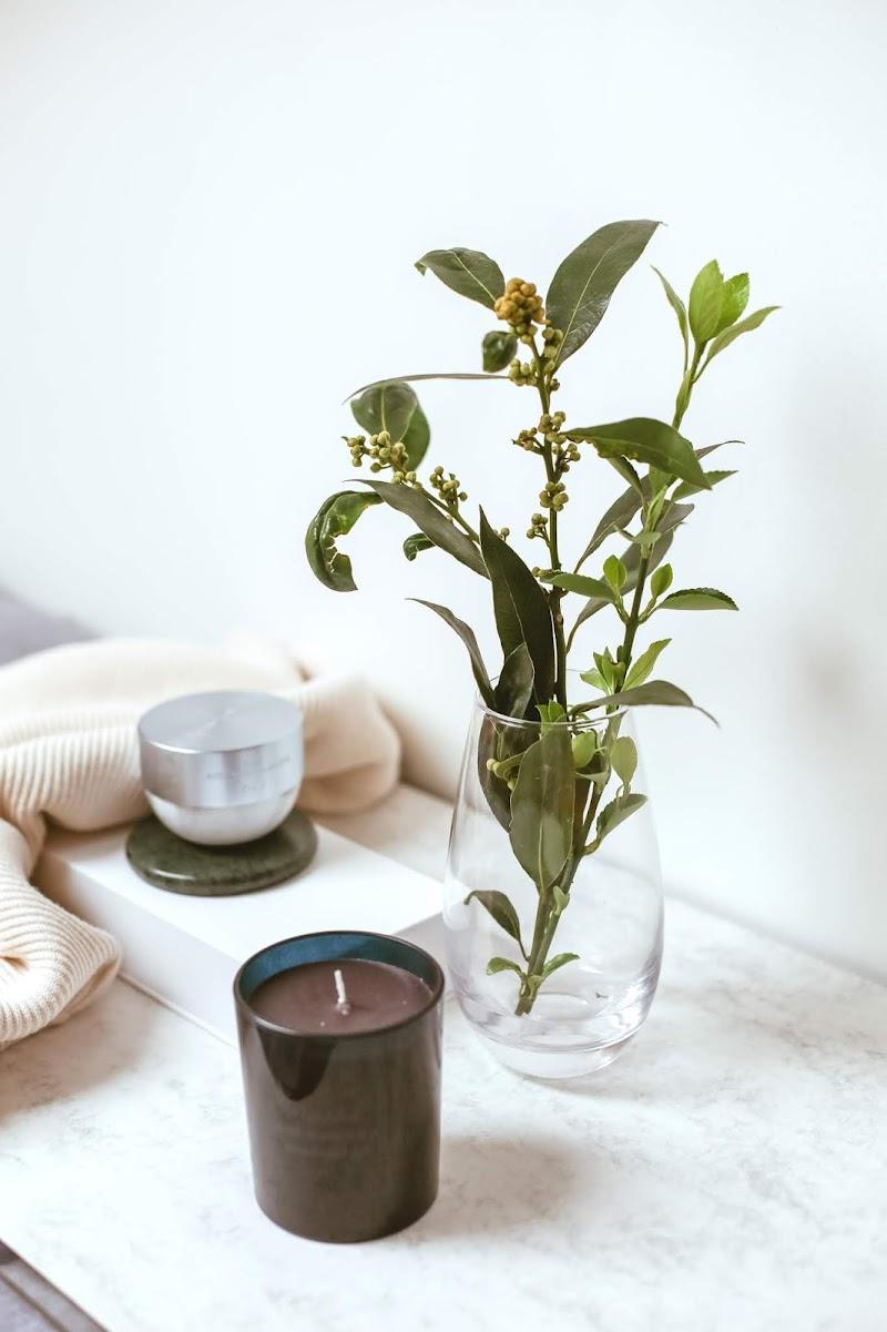 Rêveuse Wellness: Rituals