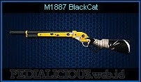 M1887 BlackCat