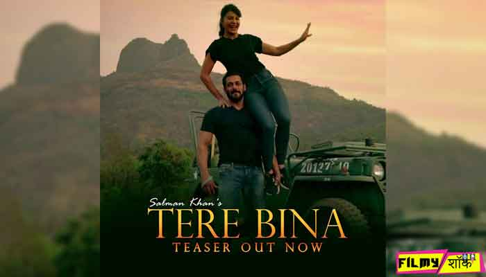 Salman Khan & Jacqueline Fernandez New Latest Bollywood Song Tera Bina