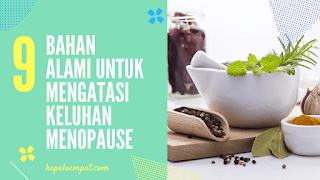 Bahan-alami-untuk-menopause