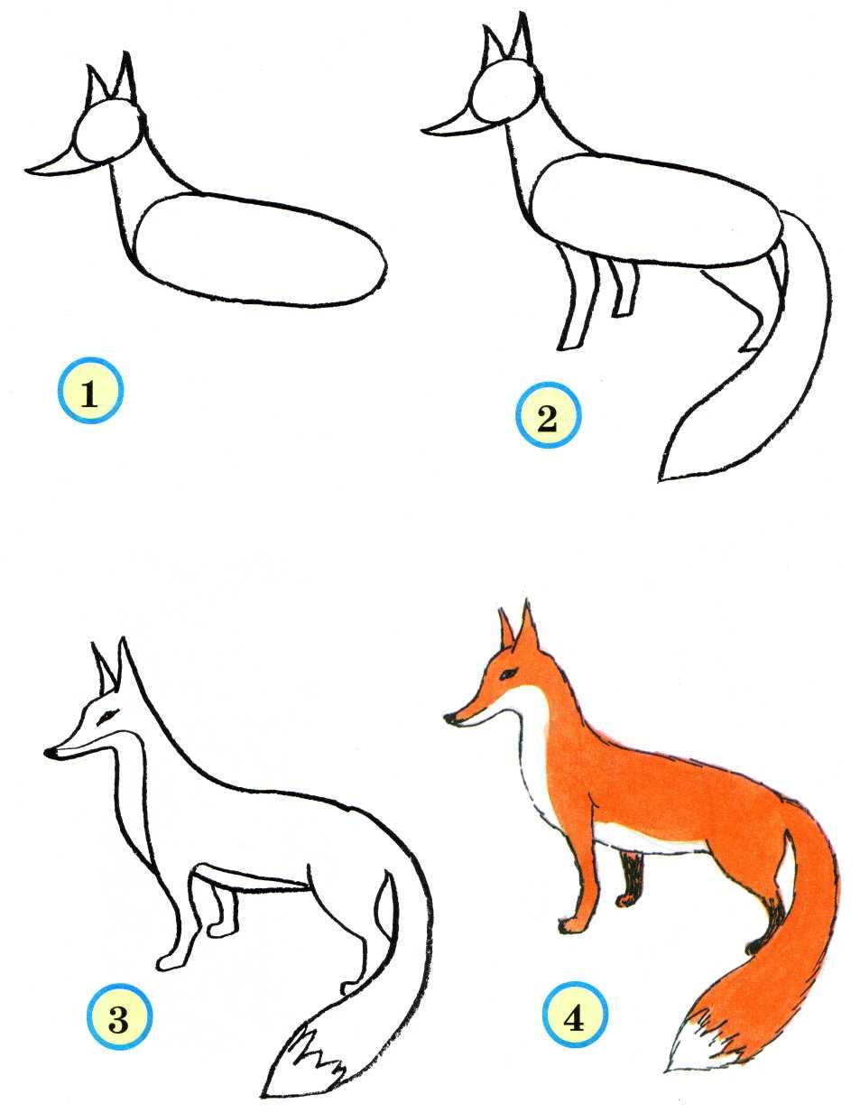 Рисовать лисичку будем карандашом, корректируя ластиком по ходу.