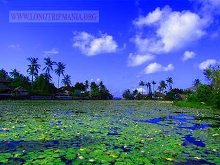 Lotus Lagoon Candidasa, Tempat Wisata Instagramable di Bali Timur