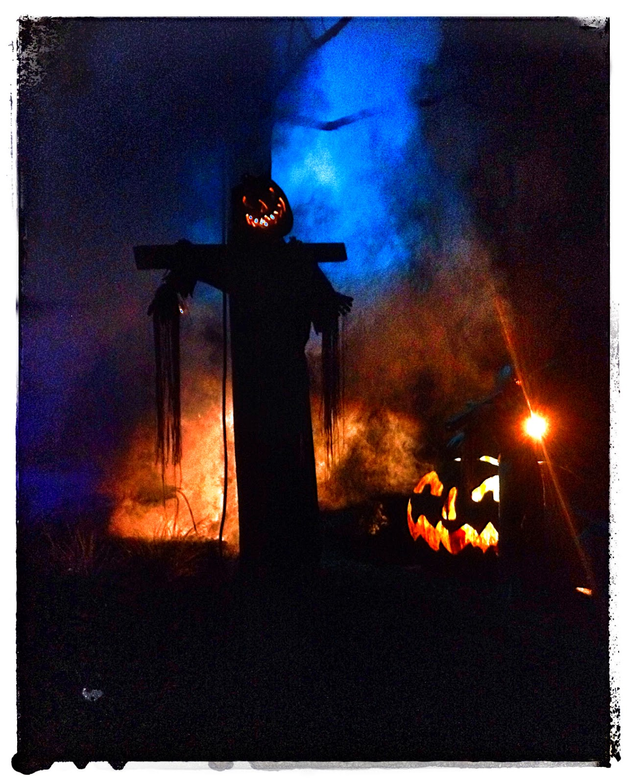 Jack-O-Lantern at Busch Gardens, Williamsburg via foobella.blogspot.com