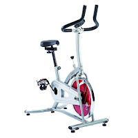 Sunny Health & Fitness SF-B1203 Indoor Cycle Trainer Spin Bike, low priced spin bike with LCD fitness monitor, 22 lb flywheel, chain drive, 4-way adjustable seat
