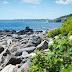 Seashore Avenue, Peaks Island