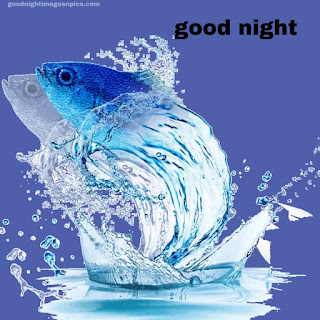 Amazing Goodnight images With Fish